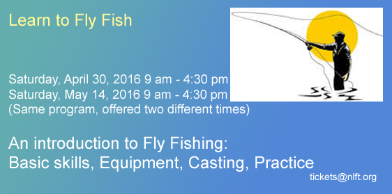 Learn-to-Fly-Fish-2016